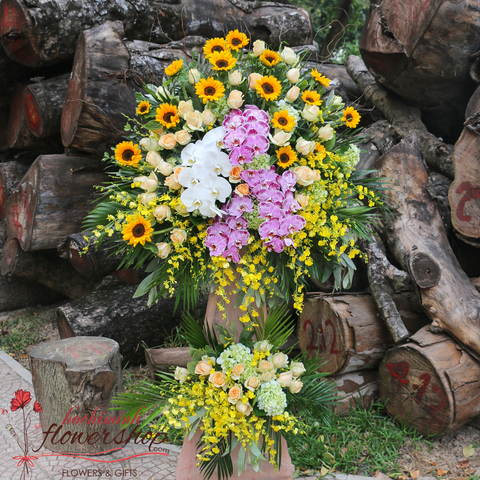 Send opening congratulation flowers to Hochiminh