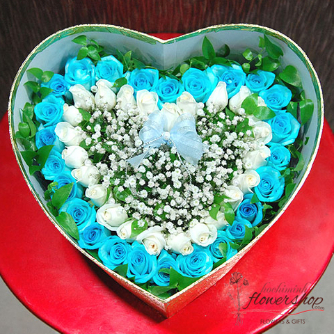 Box of blue roses delivery hochiminh vietnam