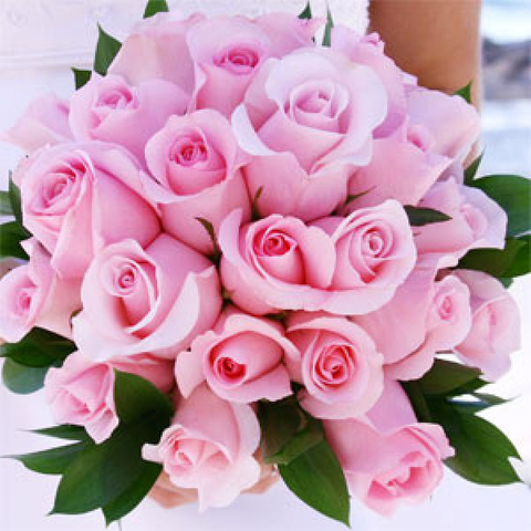 Hochiminh wedding bouquet pink roses