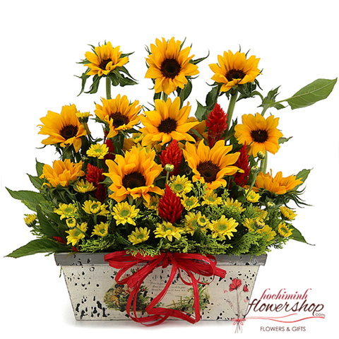 Sunflowers basket free shipping to Hochiminh