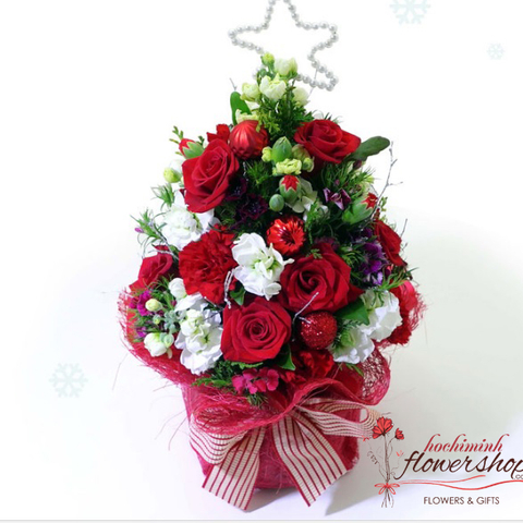 Christmas flowers beautiful
